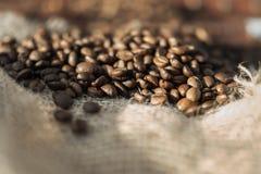 Grains de café frits Photographie stock libre de droits