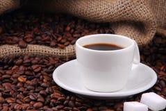 Grains de café frits Images stock