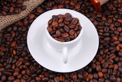 Grains de café frits Image libre de droits