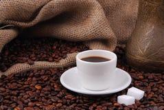 Grains de café frits Arabes Images stock