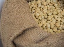 Grains de café non rôtis Photo libre de droits