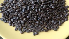 Grains de café de qualité moyenne Le processus de sécher la qualité non bonne de grains de café banque de vidéos