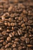 Grains de café rôtis Photo libre de droits