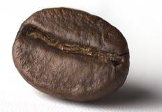 Grains de café rôtis d'isolement sur le fond blanc Chemin de coupure Sur toute l'épaisseur du champ photo stock