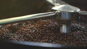 Grains de café rôtis dans la machine banque de vidéos