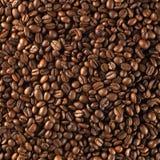 Grains de café rôtis frais photos stock