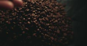 Grains de caf? r?tis parfum?s ?claboussant des mains de femme Fum?e aromatique et fond brun dans le mouvement lent banque de vidéos