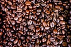 Grains de café rôtis Photo stock