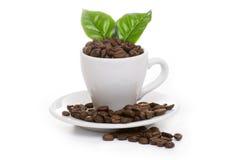 Grains de café rôtis par noir d'arabica Image stock