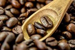 Grains de café rôtis scoop1 Photo stock