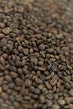 Grains de café rôtis sur la table Images stock