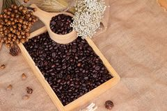 Grains de café rôtis sur le fond de brun de sac Photographie stock