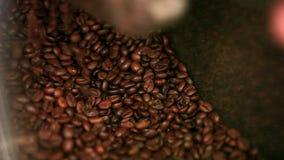 Grains de café rôtis sur le marché HD 1920x1080 banque de vidéos
