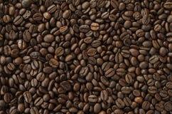 Grains de café rôtis, texture de fond Image libre de droits