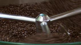 Grains de café séchant après le processus de pain grillé, loopable banque de vidéos