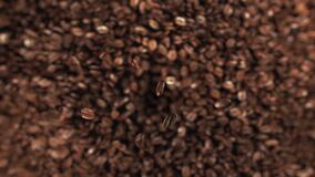 Grains de café sautant dans le mouvement lent superbe 4K banque de vidéos