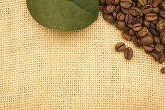 Grains de café se trouvant sur renvoyer Images libres de droits