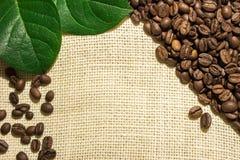 Grains de café se trouvant sur renvoyer Photos libres de droits