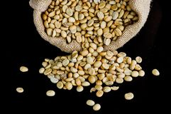 Grains de café secs Photos libres de droits