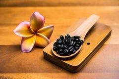 Grains de café sur les cuillères et la fleur de plumeria Photographie stock libre de droits