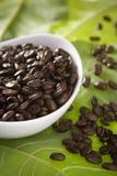 Grains de café sur les lames vertes Images stock