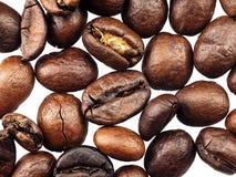 Grains de café sur un fond blanc Photo stock