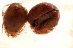 Grains de café surgelés photographie stock libre de droits