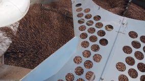 Grains de café tombant d'un grand four de torréfaction dans une usine de café banque de vidéos