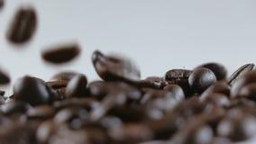 Grains de café tombant sur le fond blanc banque de vidéos