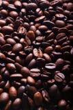 Grains de café verticaux Image libre de droits