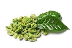 Grains de café verts et feuilles fraîches image stock