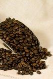 Grains de café dans l'épuisette Photo stock