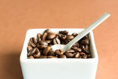 Grains de caf? dans la cuvette blanche image libre de droits