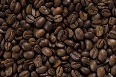 Grains de caf? images libres de droits
