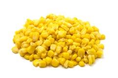 Grains de maïs Photos stock