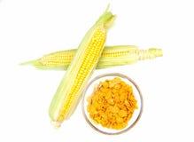 Grains de maïs d'en haut Image libre de droits
