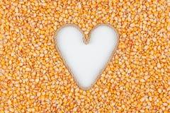 Grains de maïs et une corde sous forme de coeur avec un endroit pour des concepteurs Photographie stock