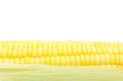 Grains de maïs mûr Photographie stock
