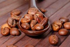 Grains de plan rapproché de café Des grains de café sont situés sur une cuillère a Images libres de droits