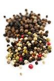 Grains de poivre mélangés Image stock