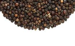 Grains de poivre noirs d'épices Image libre de droits
