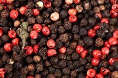 Grains de poivre noirs et rouges Images libres de droits