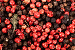 Grains de poivre noirs et rouges Photo stock
