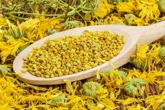 Grains de pollen d'abeille avec le calendula sec autour Images libres de droits