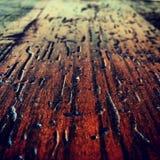 Grains. Dry glazed wood grain Stock Photos