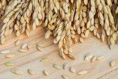 Grains, ear of rice on the wooden background. Royalty Free Stock Photos