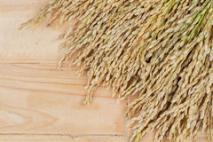 Grains, ear of rice on the wooden background, copyspace for text Royalty Free Stock Photos
