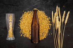 Grains and ears of malting barley near beer bottle on black background top view. Grains of malting barley near beer bottle on black background top view Stock Photo