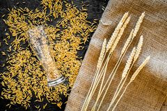 Grains and ears of malting barley near beer glass on black background top view.  Stock Image