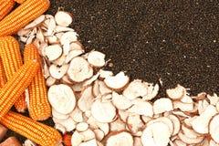Grains et graines de céréale colorés Photo libre de droits